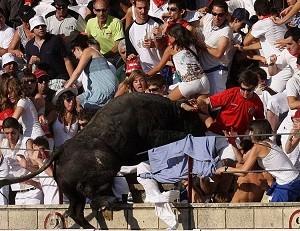 Красная тряпка провоцирует быка