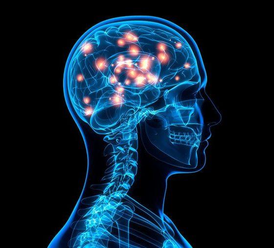 Сколько процентов мозга работает